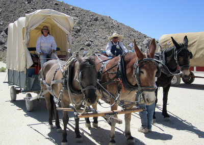 Lone Pine Wagon Train 2012