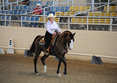 Darian Binkley on Fancy This in the Dressage Class at the ETI Convention