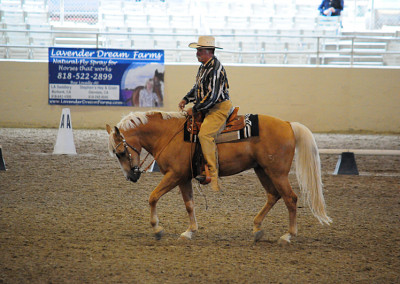 Bob Foster in the Dressage Class at the ETI Convention