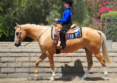 Chance Letterman in the Western Class at the ETI Convention
