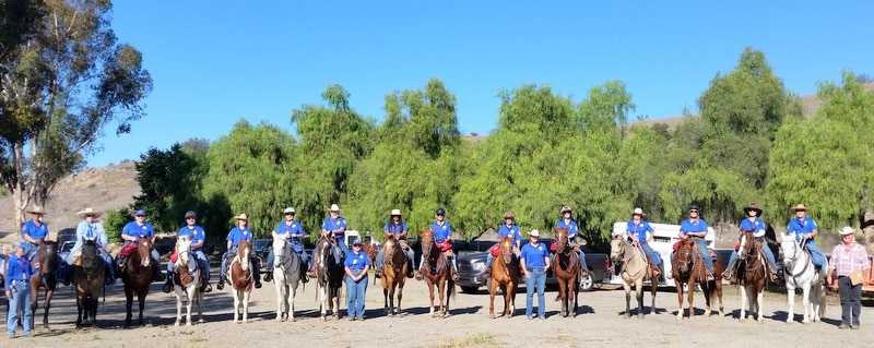Mounted Assistance Unit MAU Countywide Training 2015
